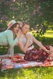 Zwei hübsche Freundinnen, die auf der roten Decke auf dem grünen Gras und Sommerpicknick haben sitzen glückliche Frau, die Rest u lizenzfreie stockfotografie