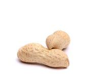 Zwei Hülsen von Erdnüssen Lizenzfreie Stockbilder