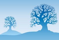 Zwei Herbstbäume im Nebel Lizenzfreies Stockfoto
