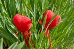 Zwei Herzen im Laub. Stockbilder