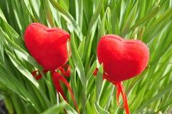Zwei Herzen im Laub. Lizenzfreie Stockbilder