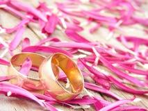 Zwei Hochzeitsringe Lizenzfreie Stockfotografie