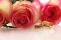 Zwei Hochzeitsringe Stockbilder