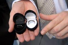 Zwei Hochzeitsringe in den Fällen Stockfotografie