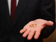 Zwei Hochzeitsringe, Palme des Mannes Lizenzfreie Stockfotografie
