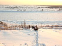 Zwei Hunde auf Bank von Winterfluß Lizenzfreie Stockfotografie