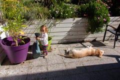 Zwei Jährige Mädchen und Labrador retriever im Patio eines Landhauses Lizenzfreies Stockbild