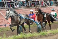 Zwei Jockeys, die in einem Pferderennen konkurrieren Lizenzfreie Stockbilder