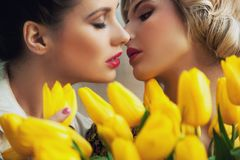 zwei junge Damen stockfotos