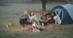 Zwei junge Familien haben ein nettes Picknick zusammen, mit einem hübschen Judohund und ein kleiner charismatischer Junge, alle s stock footage
