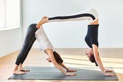 Zwei junge Frauen, die abwärts Hund Yoga asana Doppelten tun Stockfotografie