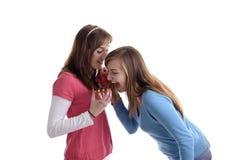 Zwei junge Frauen, die für ein wafel kämpfen Lizenzfreie Stockfotos