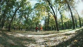 Zwei junge Frauen, die Hand in Hand laufen, und Hundefoxterrier In den Herbstwaldfallenden Blättern rütteln, Bäume, Bahn stock video
