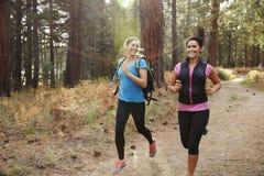 Zwei junge Frauen, die oben in einen Wald, Abschluss laufen Stockfotos