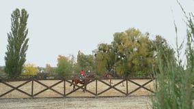 Zwei junge Frauen, die Pferde galoppieren stock footage