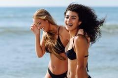 Zwei junge Frauen mit schönen Körpern in der Badebekleidung auf einem tropischen Lizenzfreie Stockbilder