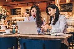 Zwei junge Geschäftsfrauen, Bloggers sitzen im Café bei Tisch und benutzen Laptop Mädchen, das Stift auf Bildschirm zeigt Stockfotografie