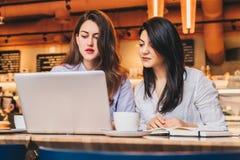 Zwei junge Geschäftsfrauen, die bei Tisch im Café sitzen und Laptop, Funktion, blogging verwenden Mädchen betrachten Monitor Stockbild