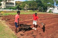 Zwei junge Jungen, die den Boden vorbereiten lizenzfreies stockbild