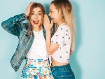 Zwei junge sch?ne Hippie-M?dchen in der modischen Kleidung im Studio stockfotografie
