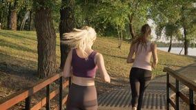 Zwei junge schöne weibliche Läufer, die im Park über Brücke, Gewichtsverlust rütteln, Eignung modelliert Betrieb, Ansicht von der stock video footage