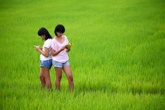 Zwei junge Schwestern, die ein Buch auf dem Paddygebiet lesen Stockbild