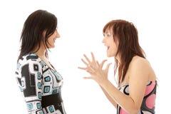 Zwei junge womans Unterhaltung Lizenzfreie Stockfotografie