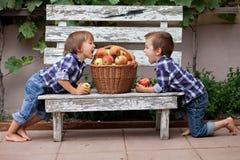 Zwei Jungen, Äpfel essend Stockfotos