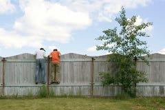 Zwei Jungen auf dem Zaun, der nach smth sucht Lizenzfreie Stockfotografie