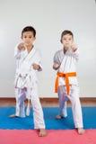 Zwei Jungen demonstrieren die Kampfkünste, die zusammenarbeiten stockfotos