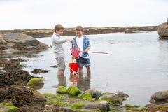 Zwei Jungen, die Shells auf Strand montieren Lizenzfreie Stockfotos
