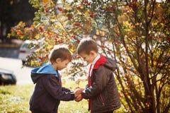 Zwei Jungen draußen lächeln und Lachen Konzeptfreundschaft Stockfotografie