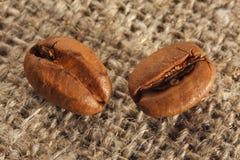 Zwei Kaffeebohnen. Lizenzfreies Stockfoto