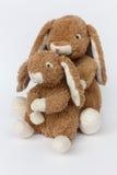 Zwei Kaninchen Lizenzfreie Stockbilder