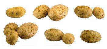 Zwei Kartoffeln Lizenzfreies Stockbild