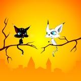 Zwei Katzen an der Dämmerung Stockfotos