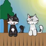 Zwei Katzen, die am Zaun hängen Stockbild