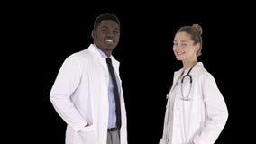 Zwei kaukasisch und afroe-amerikanisch lächelnde Doktorstellung, die herein zur Kamera, Alpha Channel schaut stock video footage