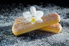 Zwei Kekse für Tiramisu Lizenzfreies Stockbild