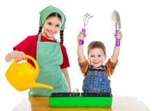 Zwei Kinder, die den Sämling pflanzen Stockfoto