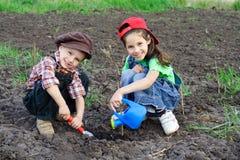 Zwei Kinder, die den Sprössling wässern Stockfotografie