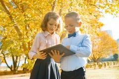 Zwei Kinder, die digitale Tablette, sonnigen Park des Hintergrundherbstes, goldene Stunde aufpassen lizenzfreie stockfotografie
