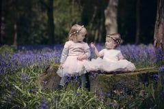 Zwei Kinder, die in einem Holz sitzen, füllten mit Frühlingsglockenblumen Lizenzfreies Stockbild