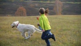Zwei Kinder, die mit golden retriever am Feld laufen stock footage