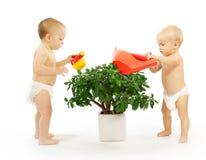 Zwei Kinder, die zusammen eine Anlage wässern. Stockfotografie