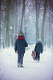 Zwei Kinder, Jungenbrüder, gehend in einen Wald mit alten suitcas Stockbild