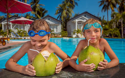 Zwei Kinder mit Kokosnüssen Stockfotografie