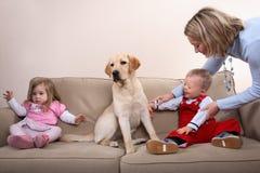 Zwei Kinder und ein Hund Stockbilder