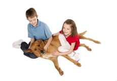 Zwei Kinder und Hund Lizenzfreies Stockfoto