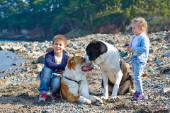 Zwei Kinder, zwei große Hunde Stockbilder